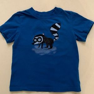 Check boys blue raccoon tee, 5t